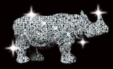 birmingham-rhino2-360x221