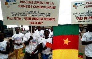 rassemblement-de-la-jeunesse-camerounaise-august-2013
